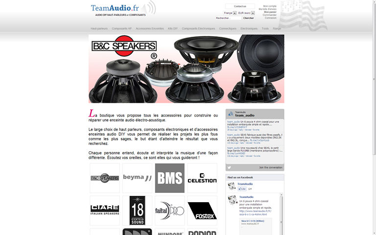Teamaudio